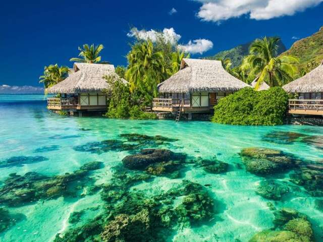 Adventure in the Islands of Tahiti