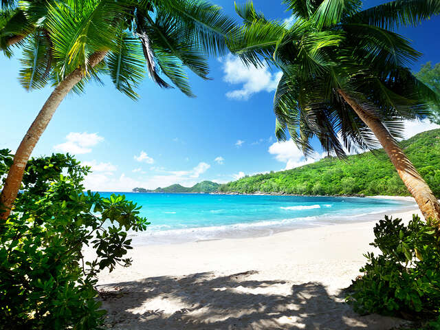 Your Caribbean Getaway with United Vacations®