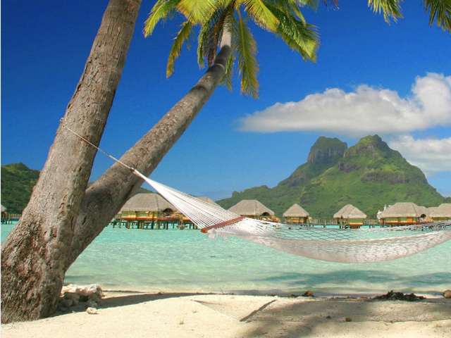 Tuxedo Travel's Custom Packages & Special Offers