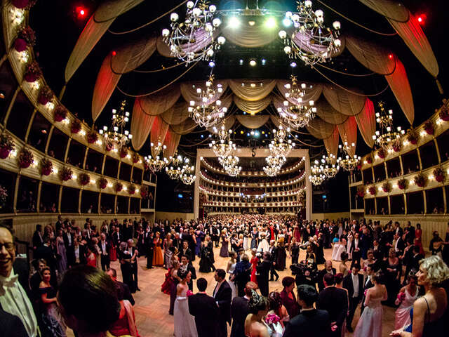 Try to visit Vienna for the Vienna Opera Ball