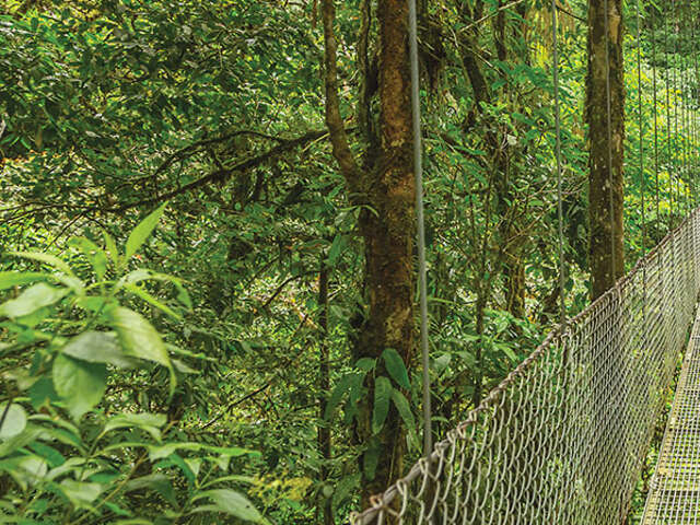 SAVE 15% on 2019 Costa Rica vacations with Monograms