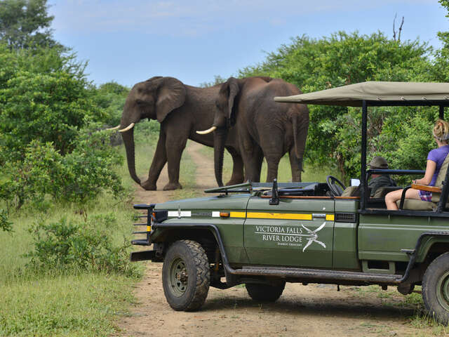 African Travel - Receive $100 Member Benefit to South Africa!