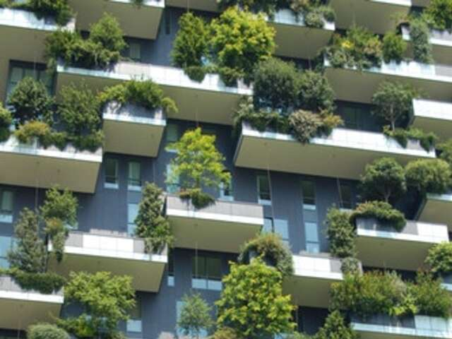 How to Choose an Eco-Friendly Hotel