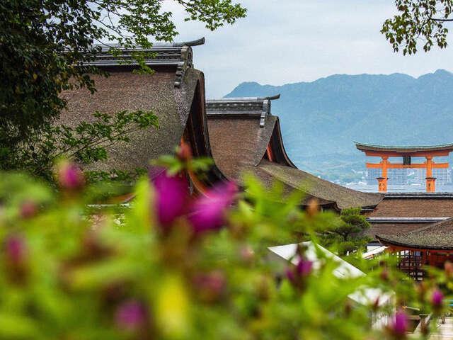 Explore Japan's art, culture and cuisine with PONANT!