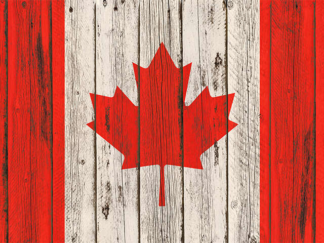 ACV_Canada_Hero Image_Flag painted on wooden frame_Jun2019.jpg