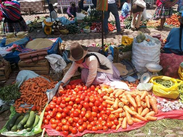 Guide to Vegetarian and Vegan Travel in Peru