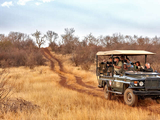 A Safari with Significance