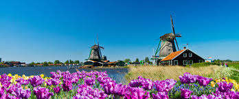 TULIPS & WINDMILLS - Discover Holland & Belgium March 2022