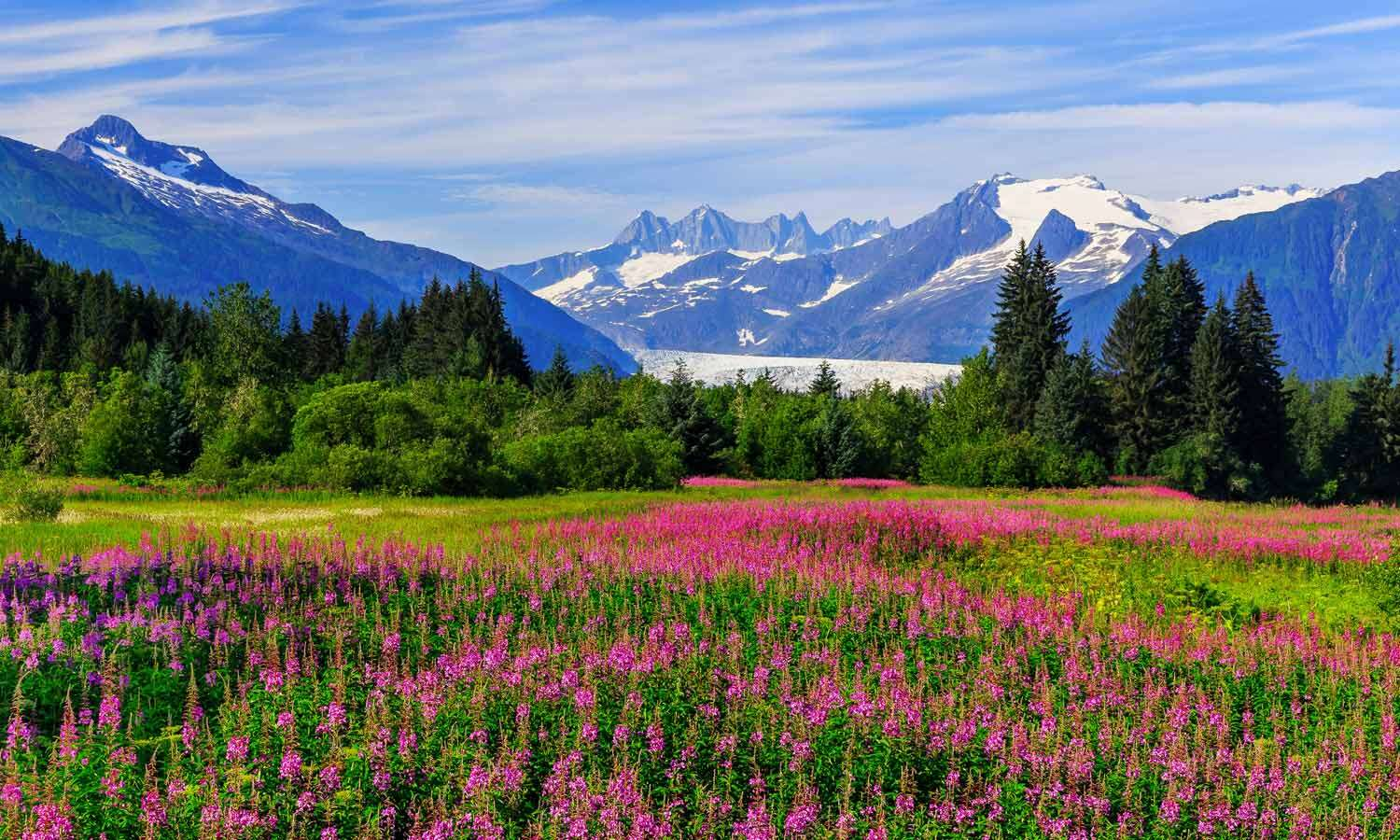 10 Once-in-a-Lifetime Adventures You Can Have in Alaska