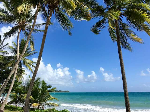 Martinique, A little piece of heaven in the Caribbean