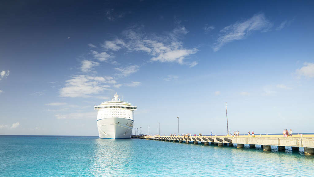 CDC Allows Resumption of Cruising: Vanessa Lee Comments