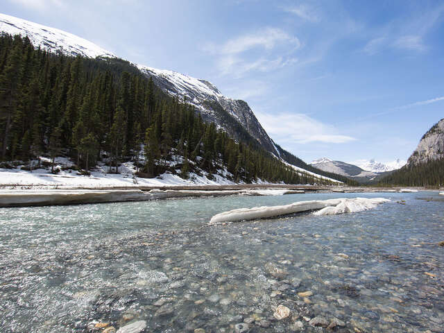 Collette - 10% Off Canadian Rockies by Train