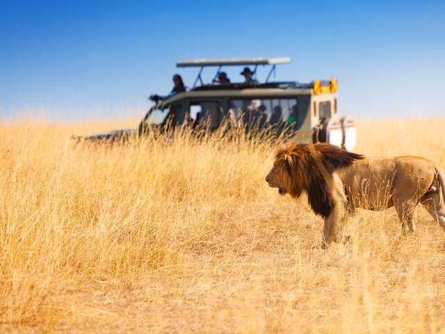 A classic African safari vacation in Kenya