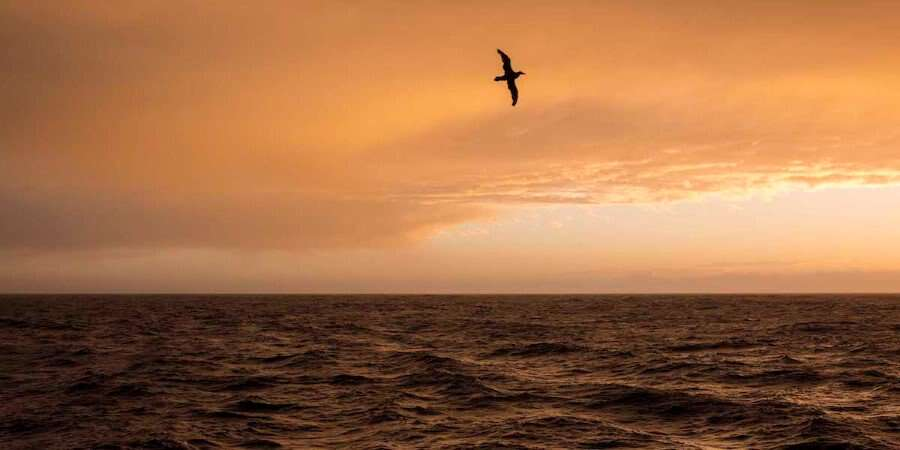 Crossing the Fabled Drake Passage - Drake Passage