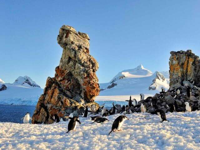 Exploration of Antarctica, Patagonia and the Falklands (Southbound)