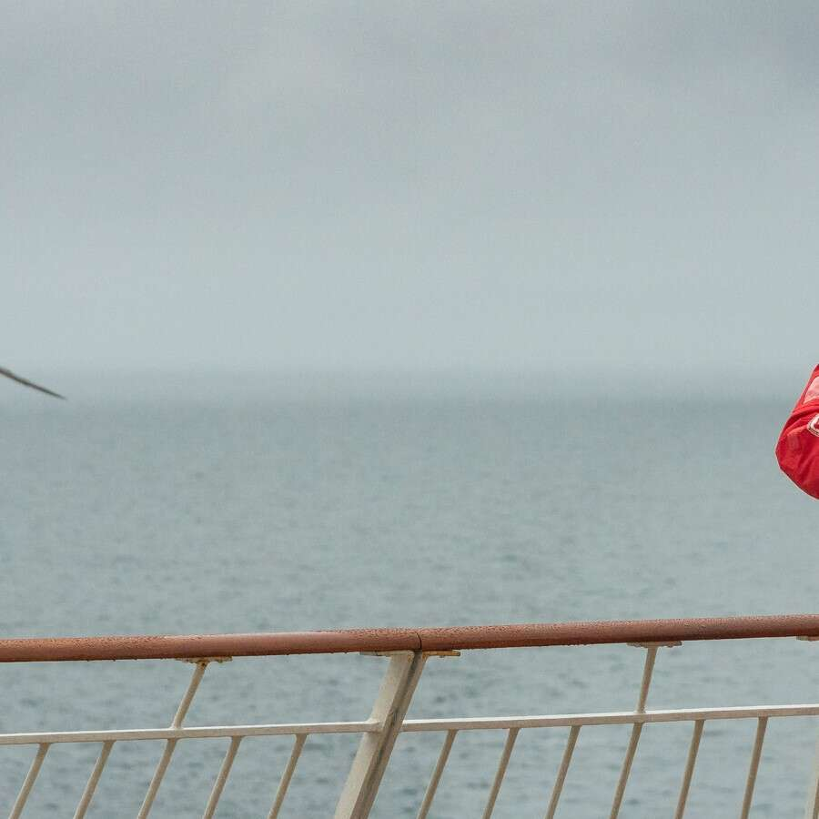 Relaxation in the North Sea - At Sea