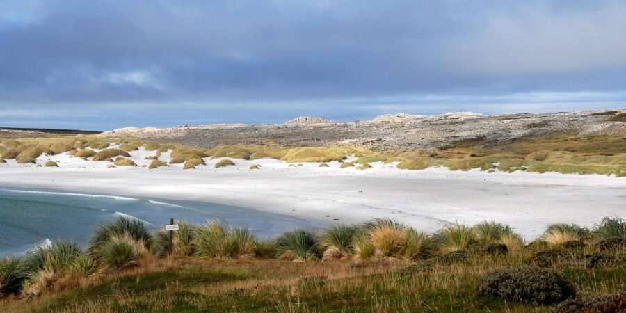Pubs, Penguins, and Perfect Wilderness - Falkland Islands