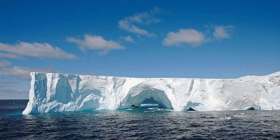 The Voyage North - The Drake Passage