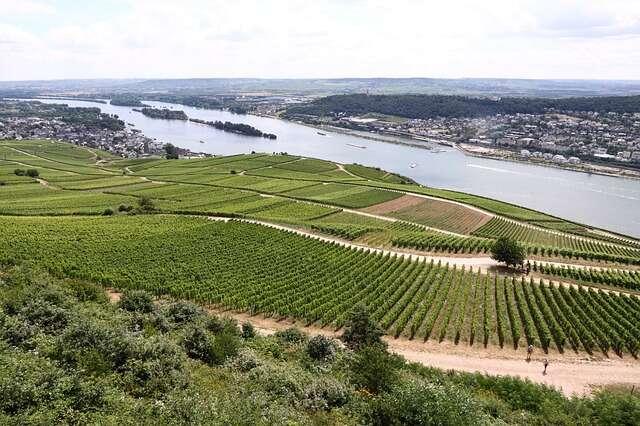 Koblenz—Rhine Gorge