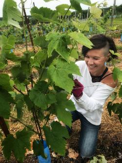 Lesley Quinn smiling in vineyard