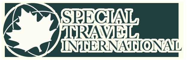 Special Travel International