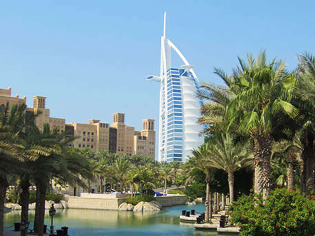 an examination of falconry in the uae Tour from to on dubai, oman and abu dhabi from  uncover the treasures of the united arab emirates (uae  step into the examination room to perhaps witness a.