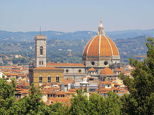 Spotlight on Florence
