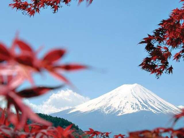 Japan Express: Osaka to Tokyo