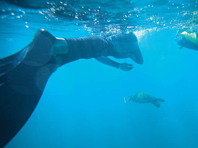Galápagos Central Islands & Inca Discovery