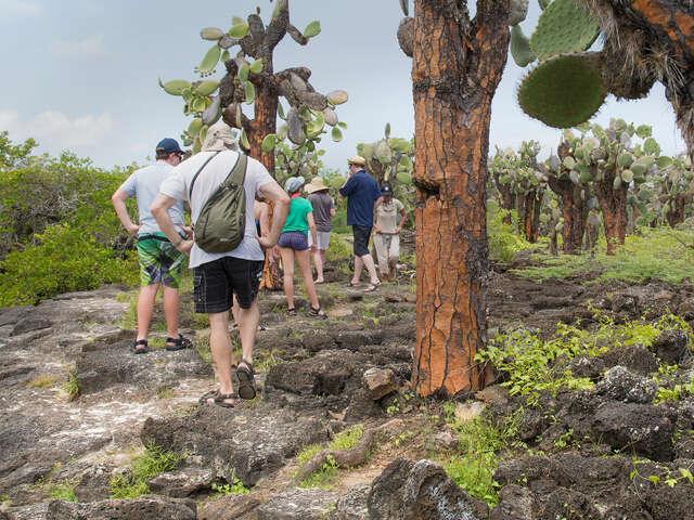 Galápagos Land & Sea — North & Central aboard Estrella