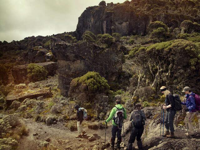 Mt Kilimanjaro Trek - Machame 8-Day Route
