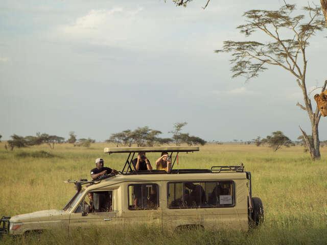 Kenya & Tanzania Safari Experience