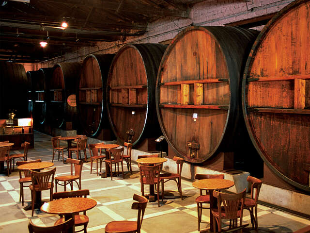 Mendoza Wineries Independent Adventure