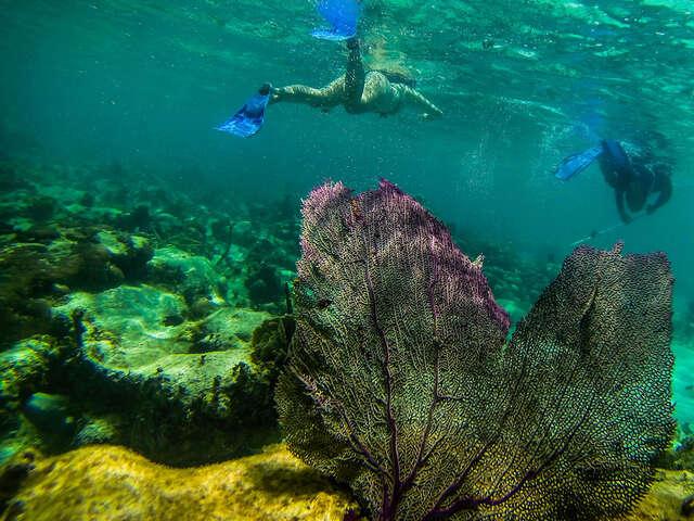 Explore Belize