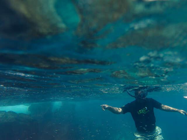 Galápagos — North & Central Islands aboard the Evolution