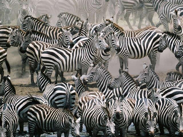 East Africa Overland