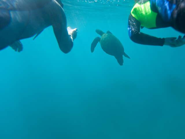 Galápagos — Central, South & East Islands aboard the Monserrat