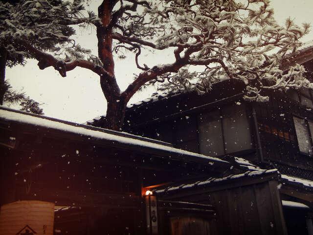 Japan Winter Highlights
