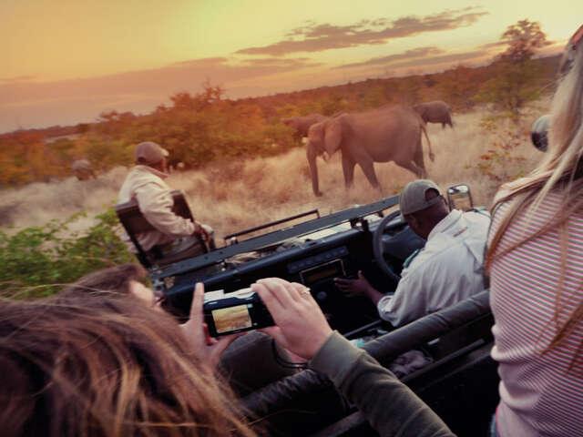 Amboseli Safari Experience