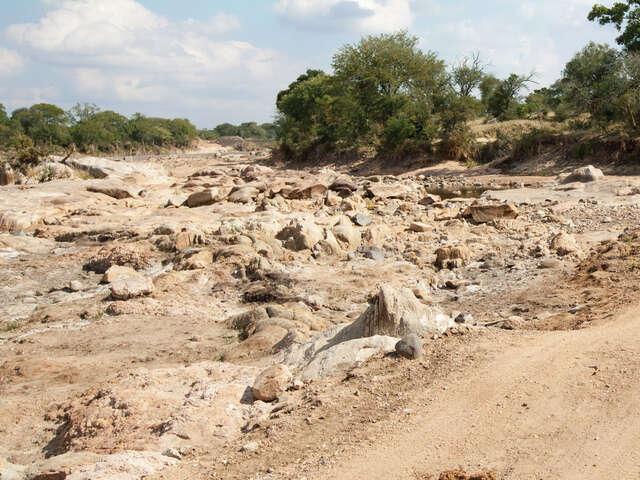 Explore Kruger National Park