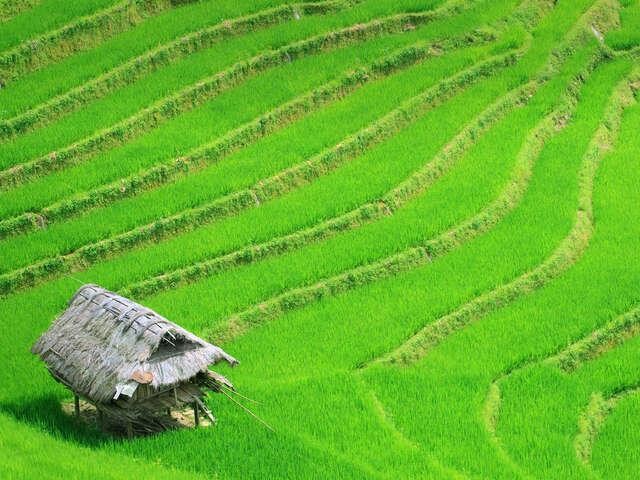 Timeless Vietnam