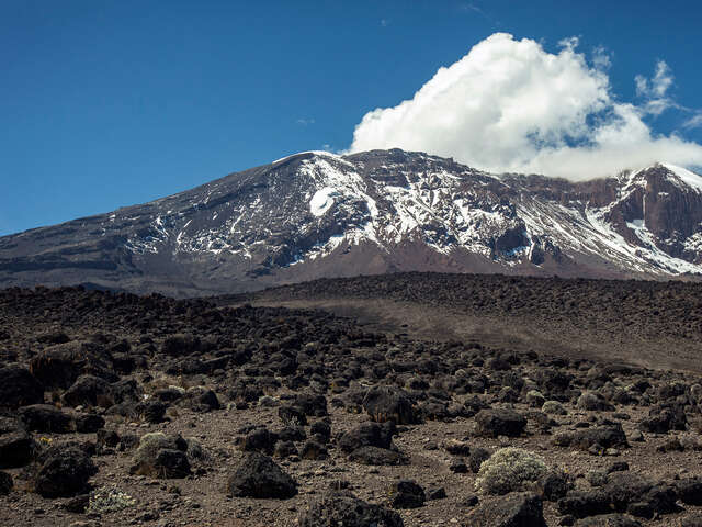 Mt Kilimanjaro Trek - Machame Route (9 Days)