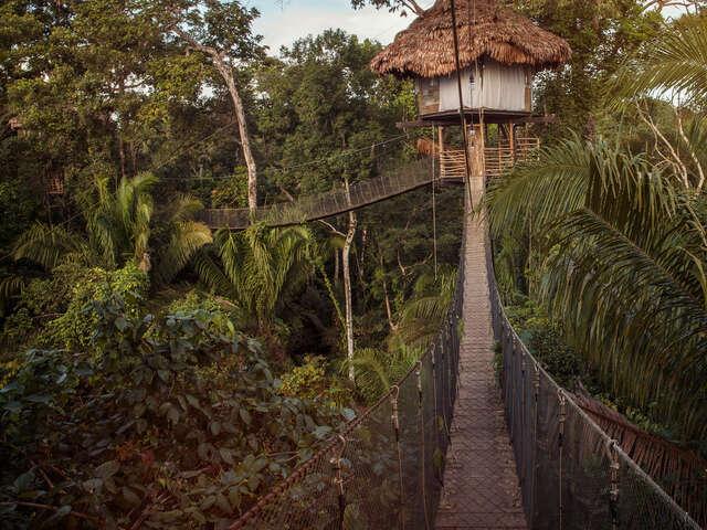 Inland & Amazon