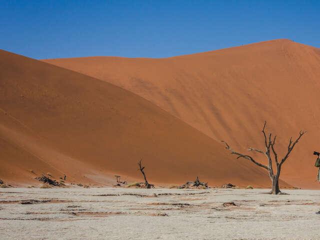 Southern Africa: Desert, Wildlife & Falls