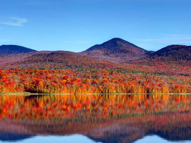 Fall Colours of New England Summer 2019