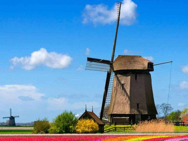 Best of Holland First Look 2019