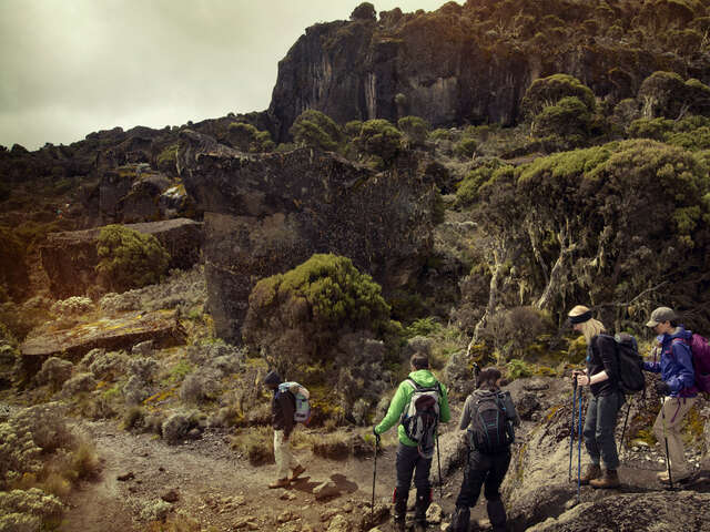 Mt Kilimanjaro Trek - Machame Route (8 Days)