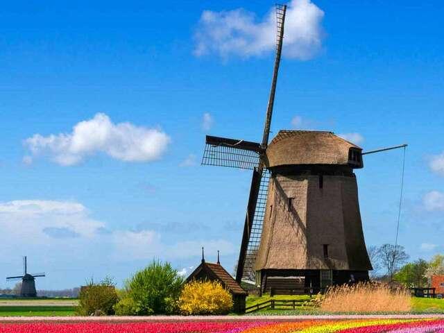 Best of Holland Summer 2019