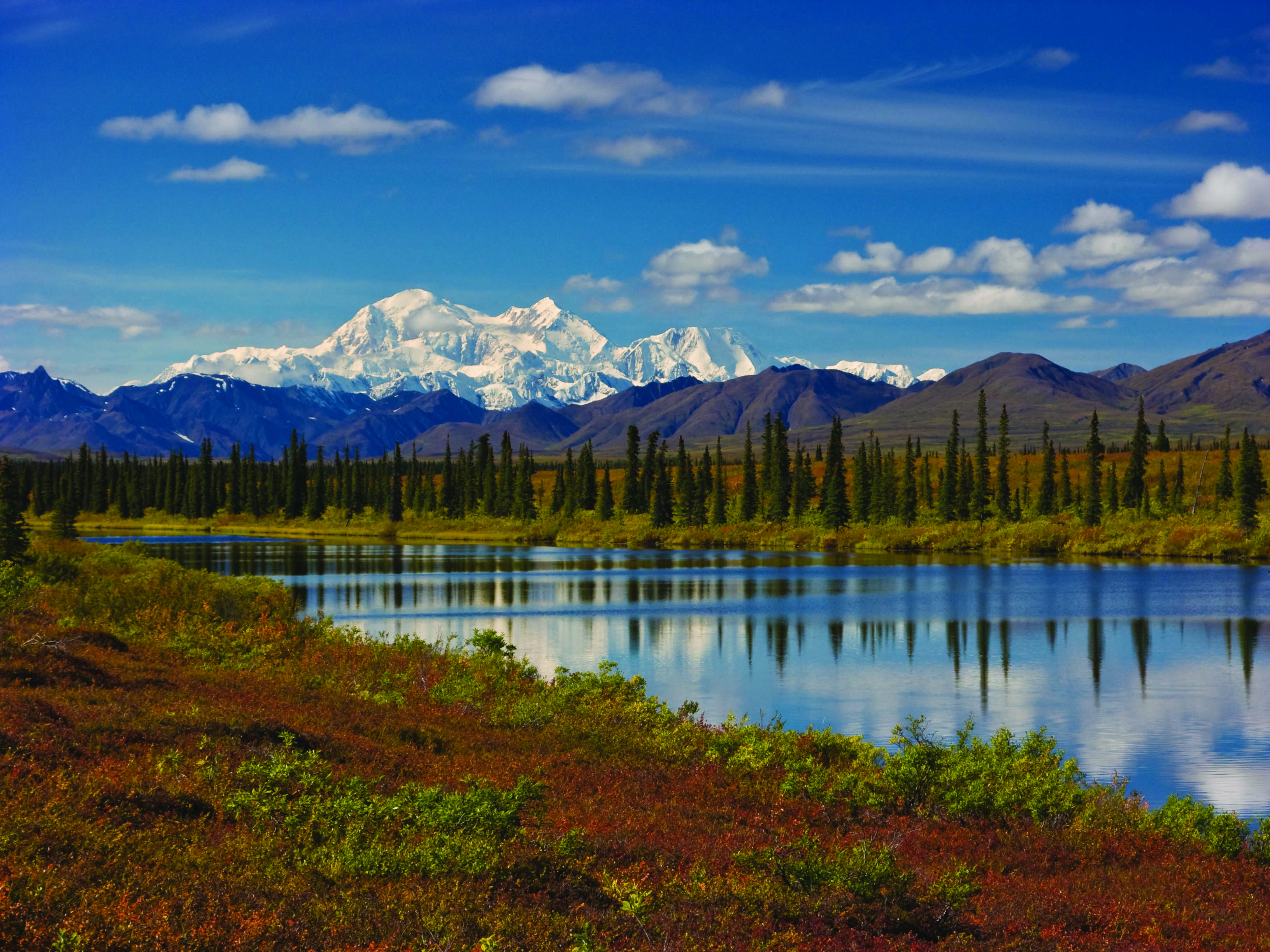 Alaska Discovery Land & Cruise featuring a 7-night Princess Cruise