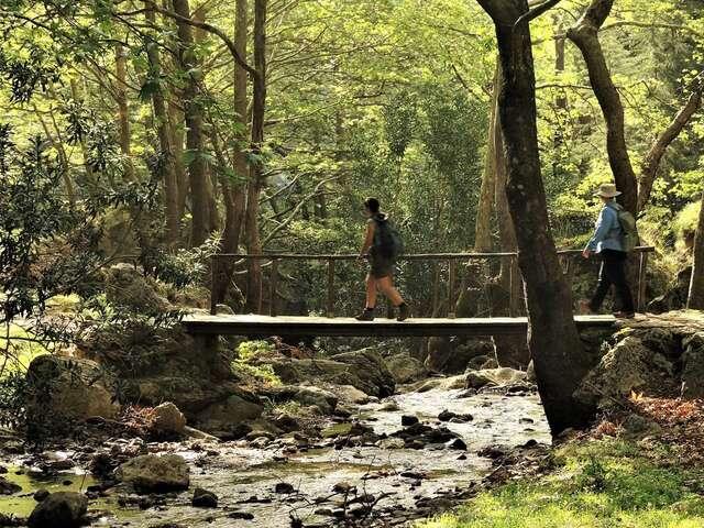 Hiking Crete: Gorges & Coastal Walks